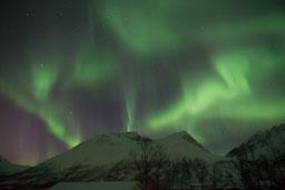 Aurora-northern lights-giftofparis.com