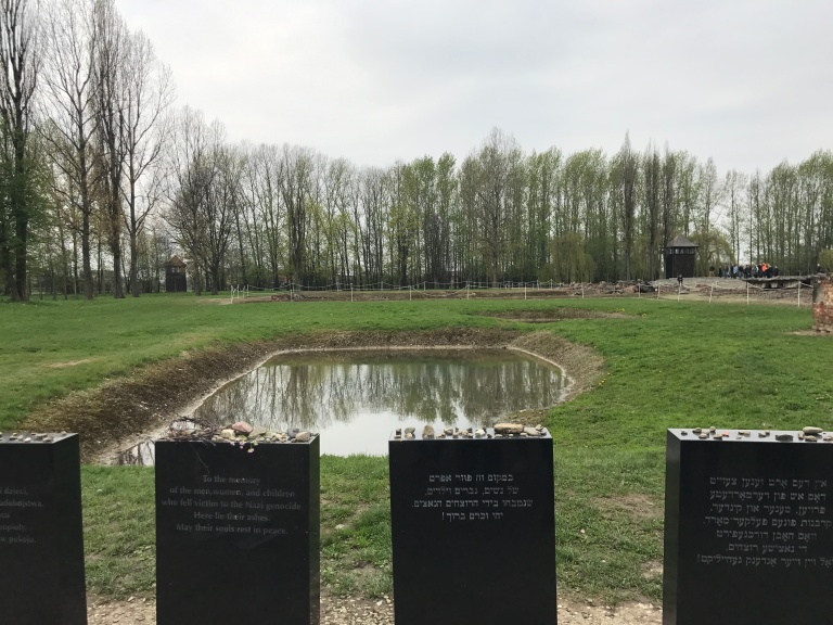 Auschwitz-Birkenau- suffering of Jews- jews ashes-giftofparis.com