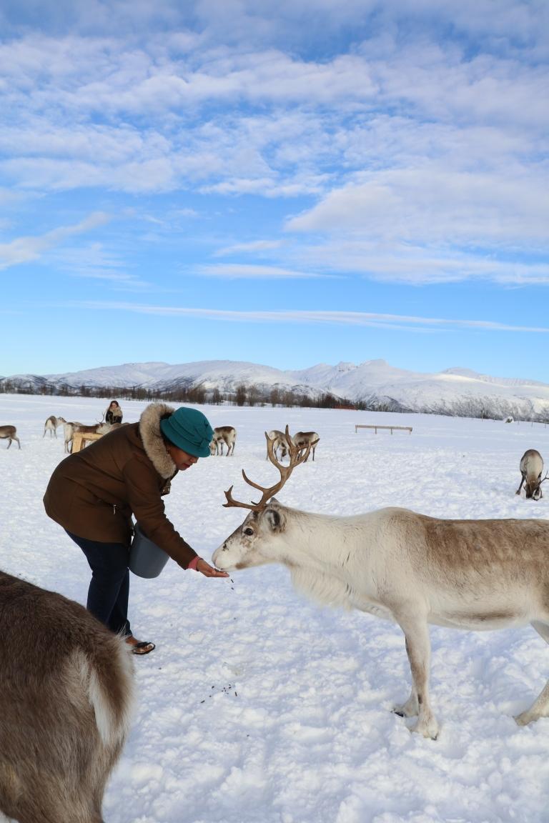 Sami-Reindeer-farm-Norway-giftofparis.com