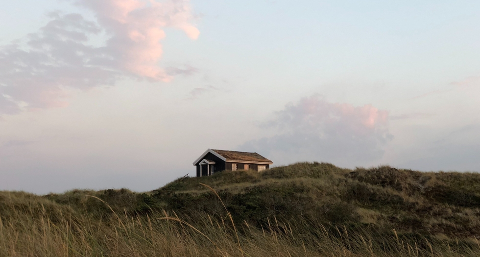 Nature-Houses-Skagen-in-Summer-giftofparis.com